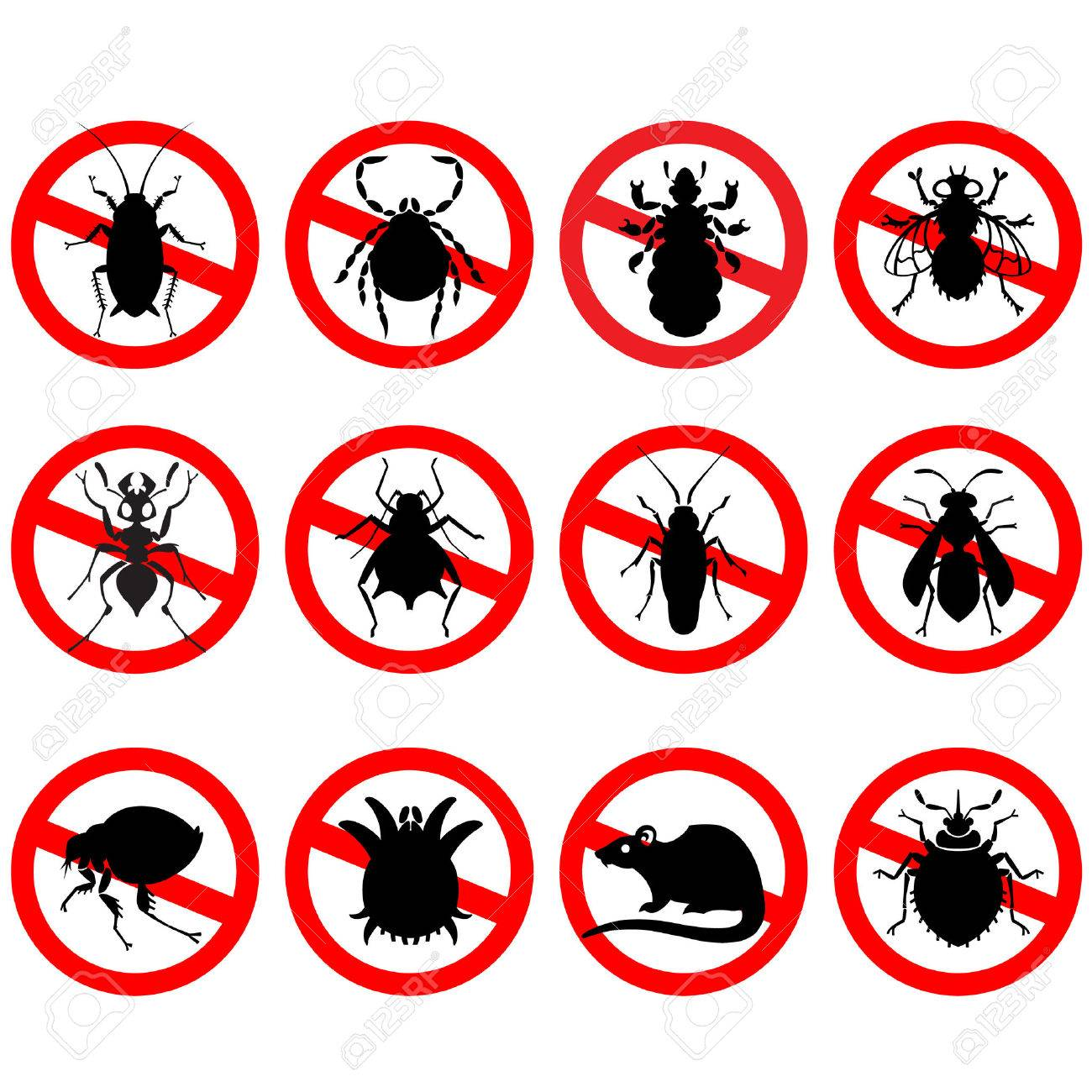 different cartoon or symbolic picture animals - set of household pests in pure vector style - 51903797