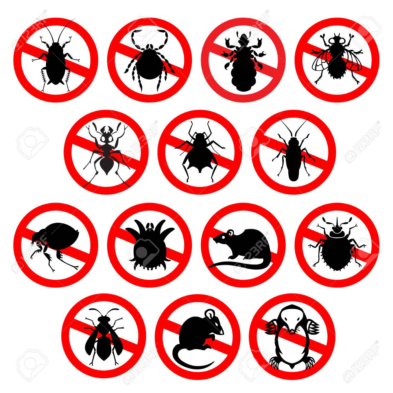 different cartoon or symbolic picture animals - set of household pests in pure vector style - 51903798