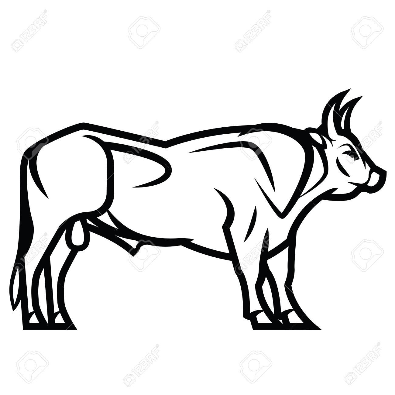 Dessin Noir Et Blanc Vectoriel Puissant Taureau A Cornes Clip