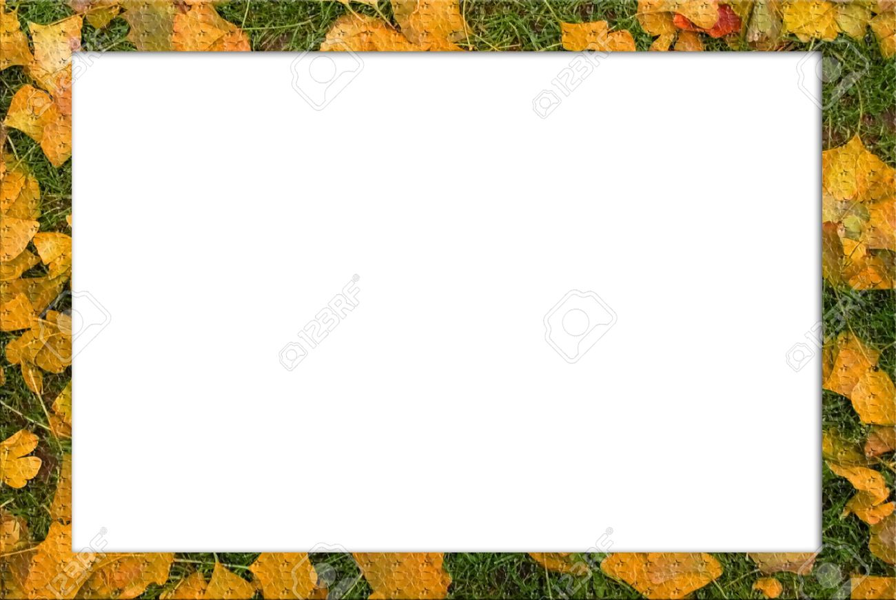 flower frame designs in square shape stock photo 6578763
