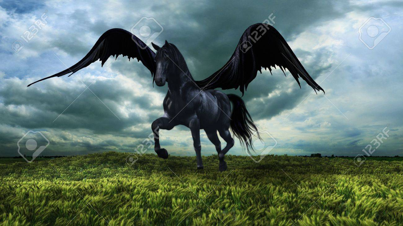Fantasy Winged Black Horse Stock Photo Picture And Royalty Free Image Image 59046489