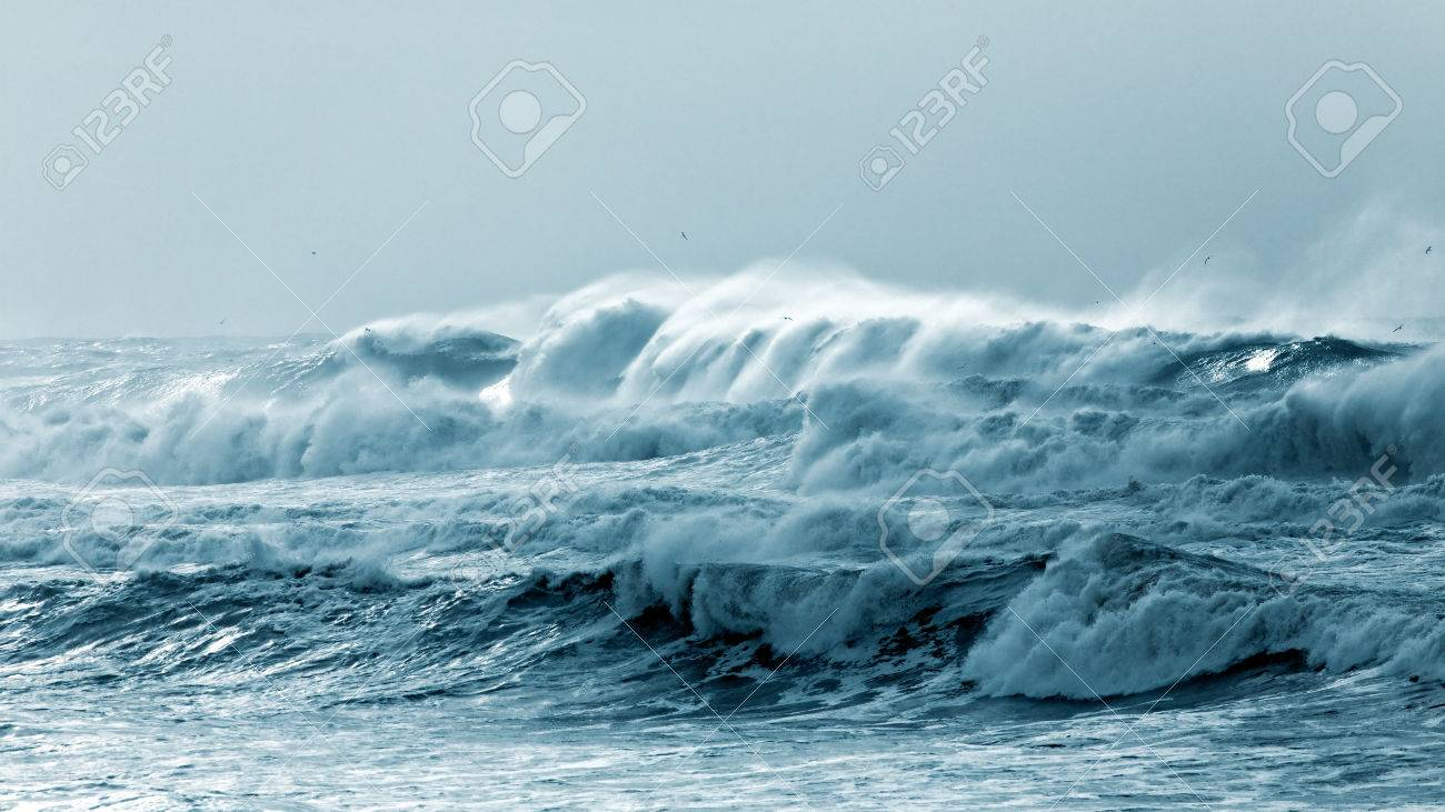 Big waves approaching the Portuguese coast in a stormy and misty day - 32229386