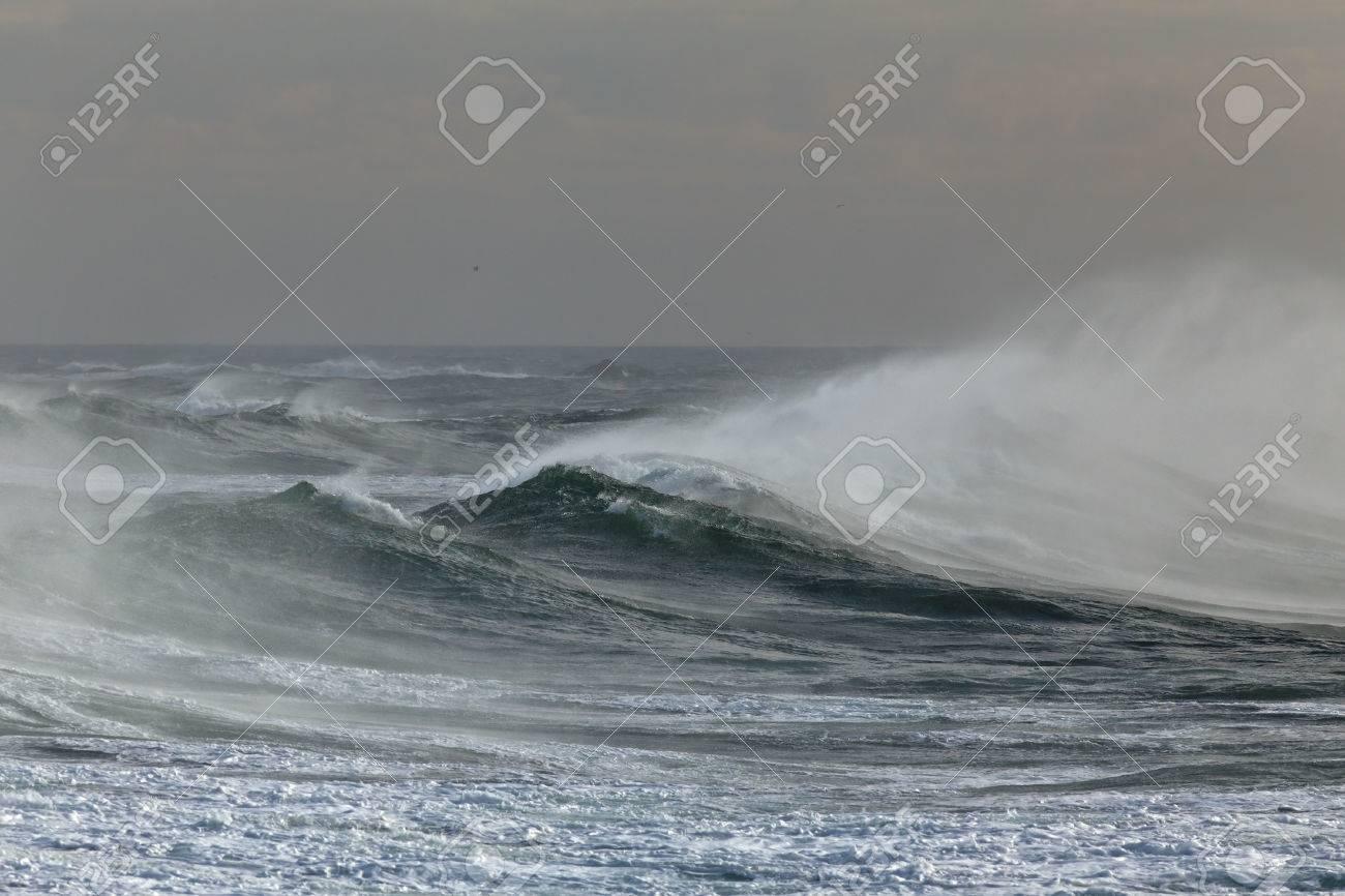 Ocean windy waves spraying. Portuguese coast in Autumn. - 49108073