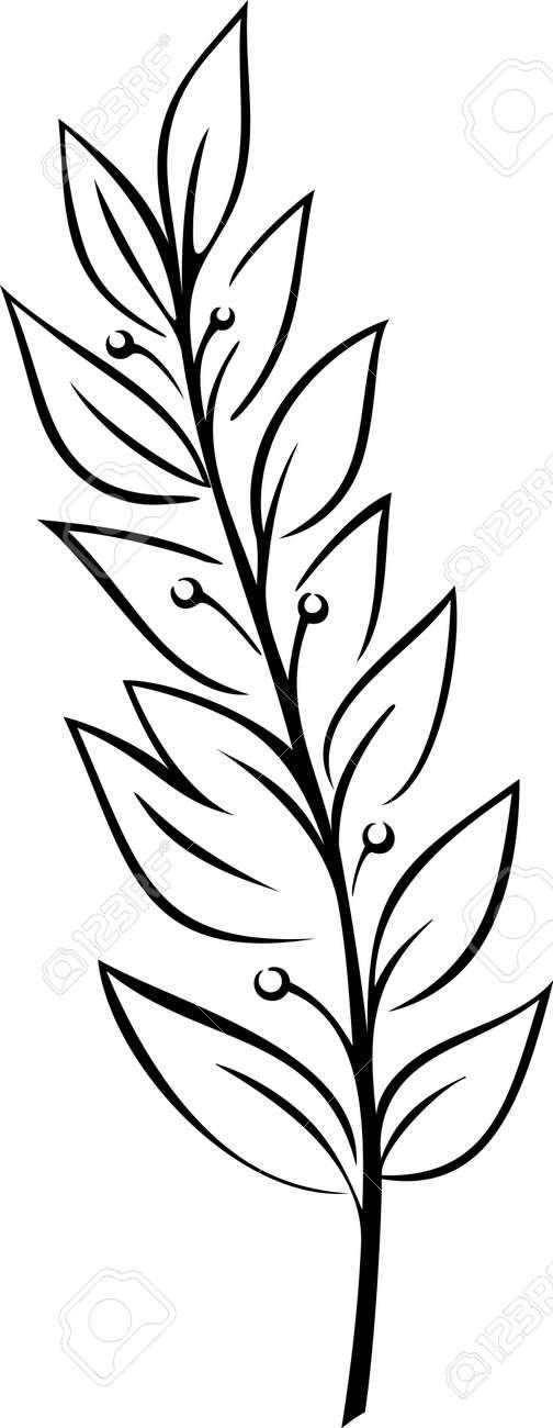 Laurel Branch (Vector) - 4960544