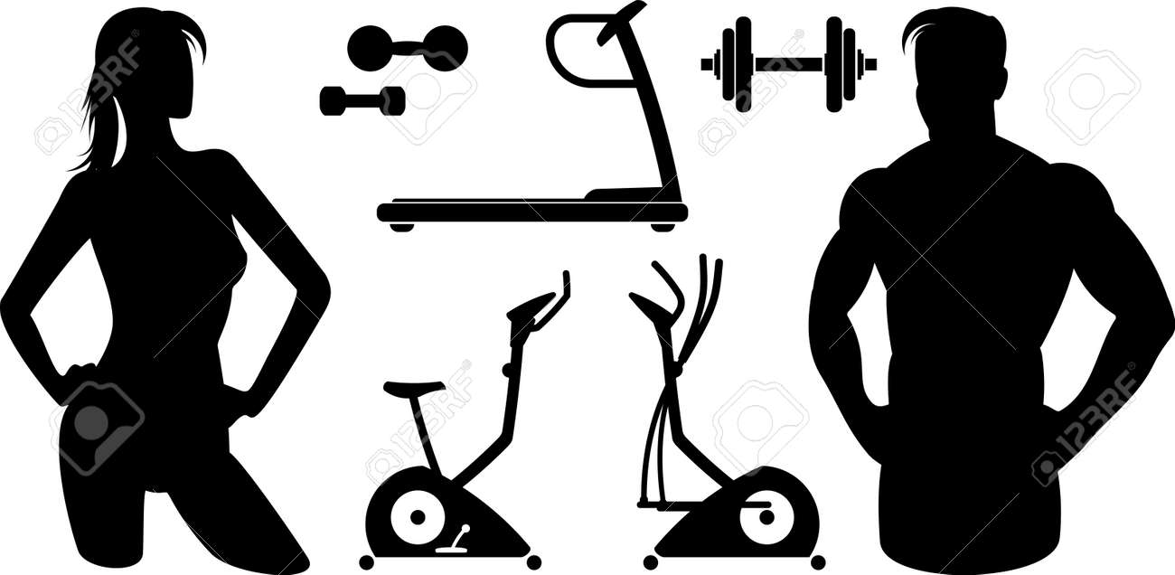 Fitness – Gym equipment (Vector) - 9667612