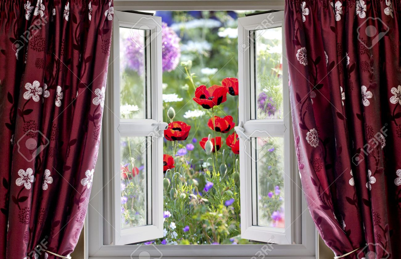 Offenes fenster  Blick Durch Ein Offenes Fenster Auf Wilde Blume Garten Im Sommer ...