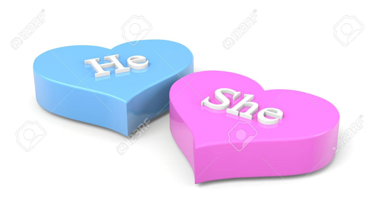 Couple Of Blue And Pink Hearts With He She English Text On White ...