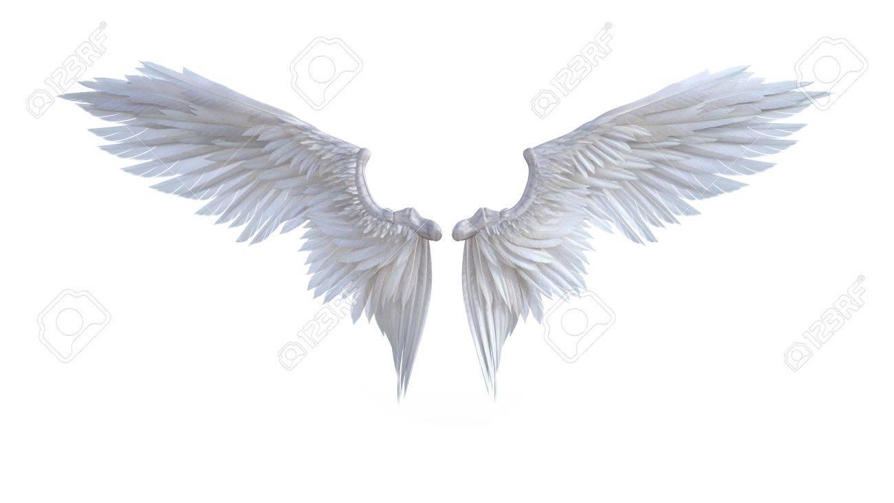 3 D イラスト天使翼白翼羽が白い背景に分離されました の写真素材