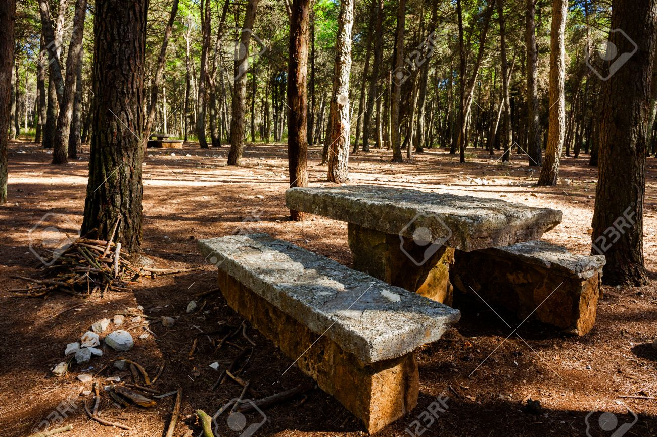 Picnic Area With Stone Table And Bench At Mercadante Forest, Apulia, Italy  Stock Photo