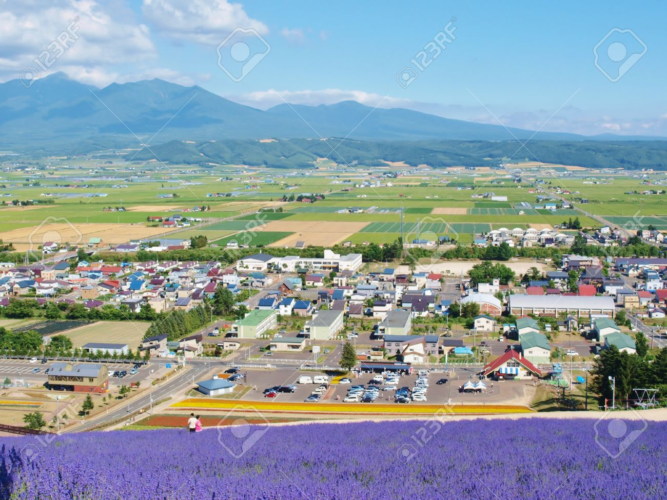 The City Lavender Field View On The Mountain At Furano Hokkaido