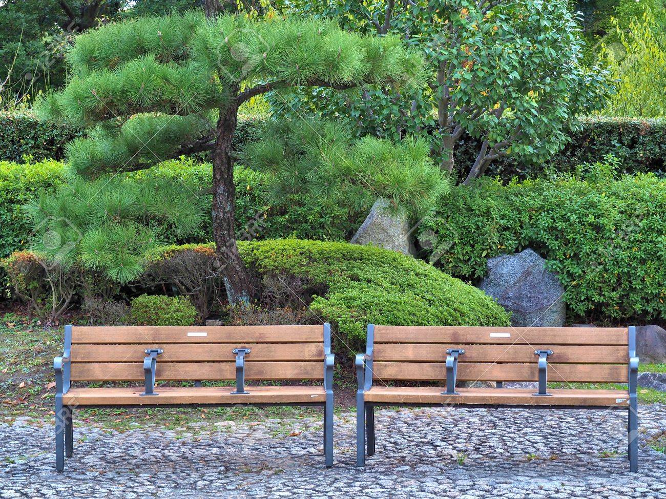 Stock Photo   Two Wooden Chairs In Japanese Garden With The Tree Background.
