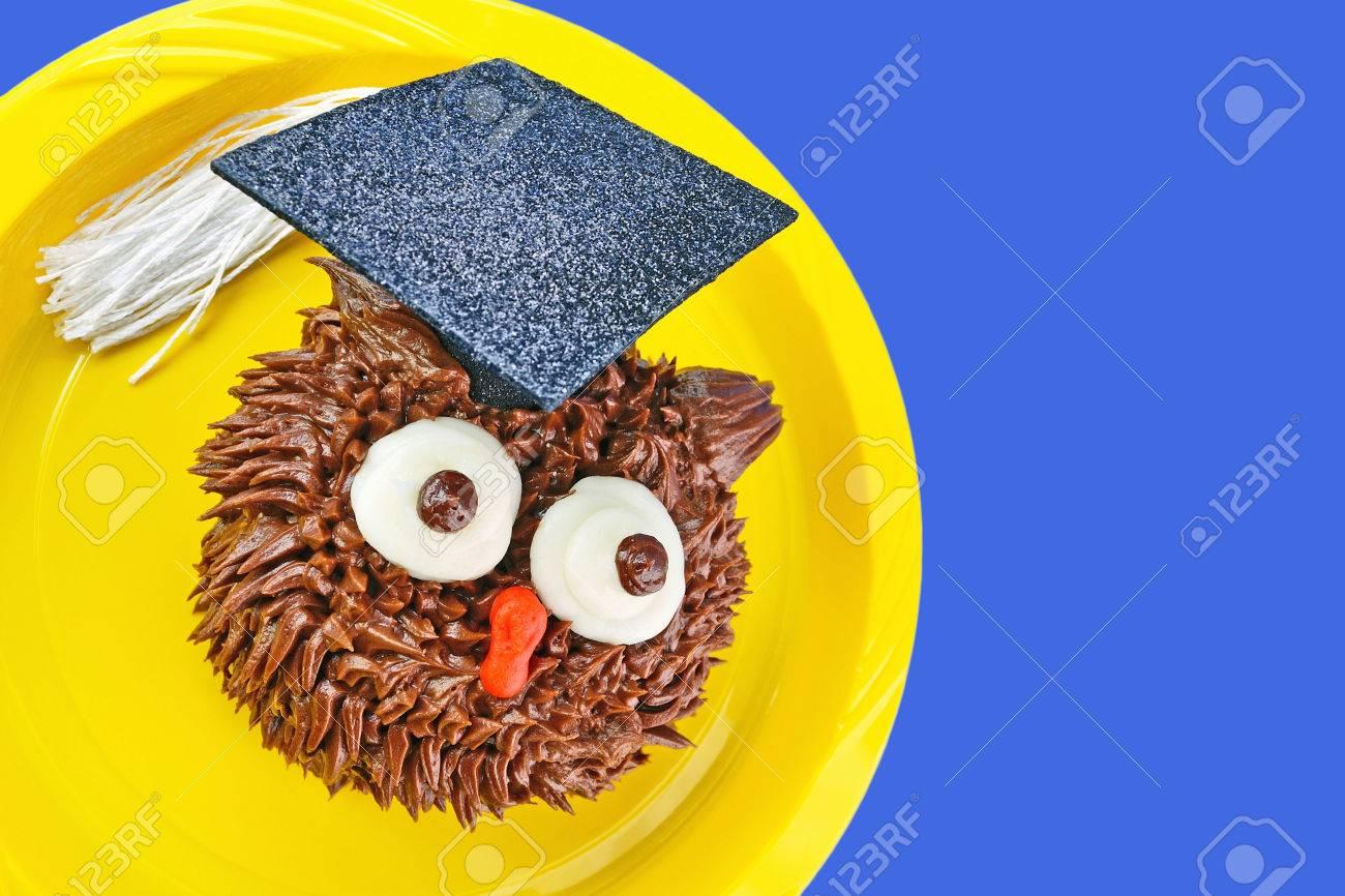 Ein Schokoladen Eulenkuchen Tragt Eine Abschlusskappe Dekoration Und