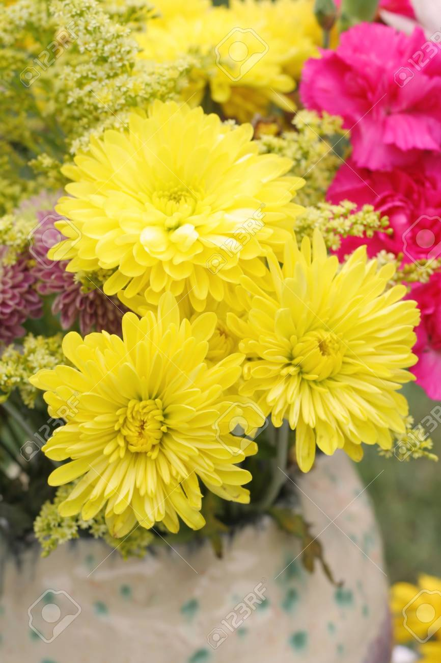 Bouquet of fall flowers including chrysanthemums of many colors bouquet of fall flowers including chrysanthemums of many colors stock photo 1886795 izmirmasajfo