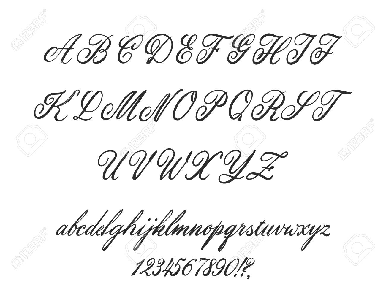 Latin alphabet classical calligraphy and lettering  Wedding font