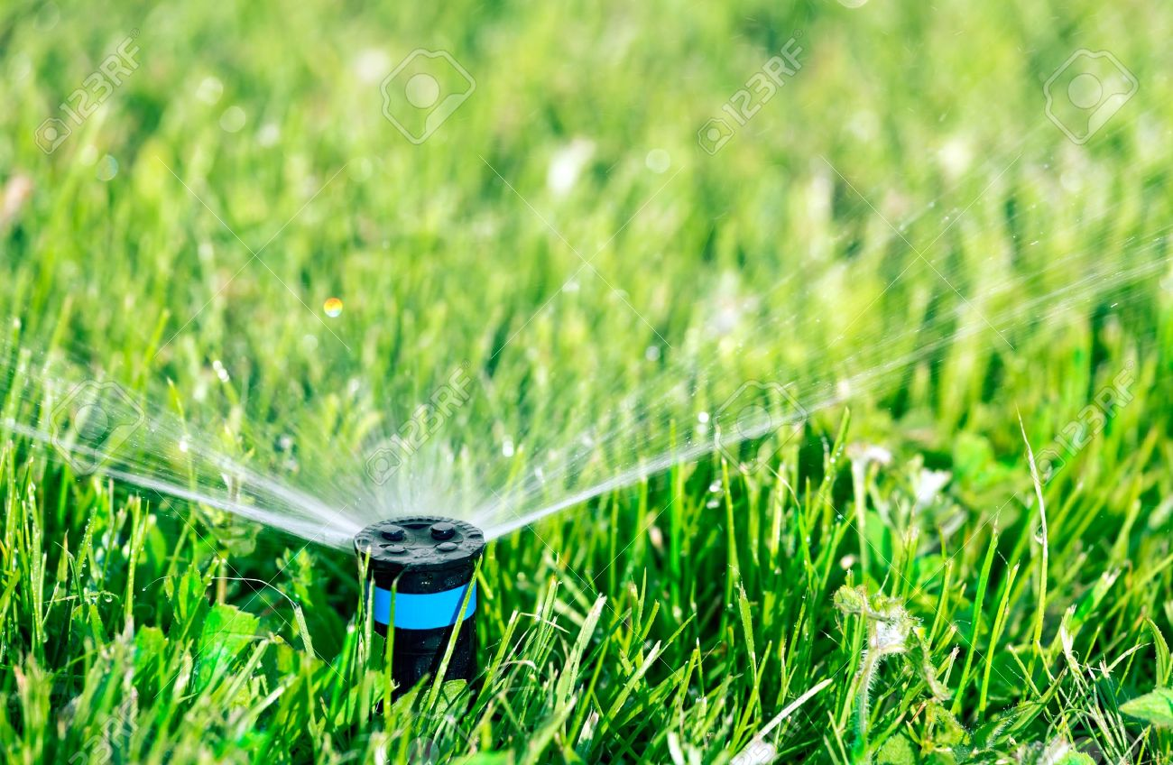 Lawn sprinkler watering green lawn Stock Photo - 15149083