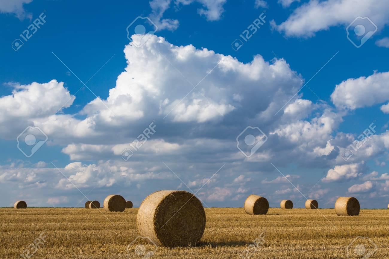 Straw bales on stubble Stock Photo - 16926115