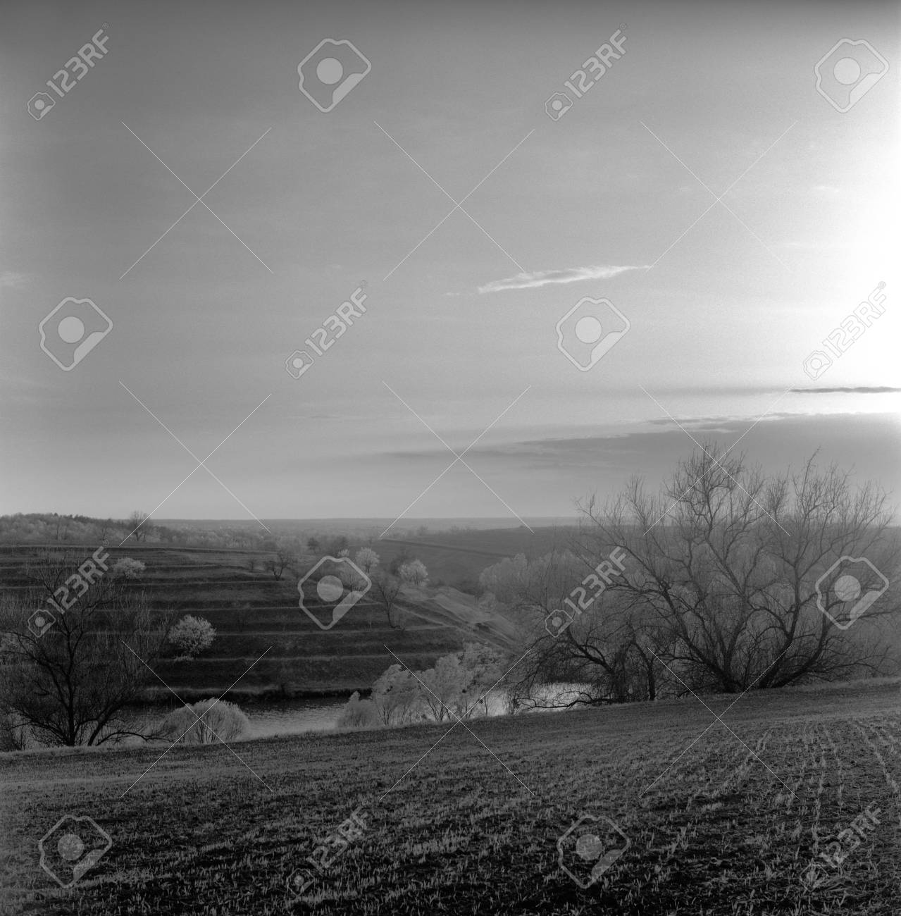 Black white film orange filter stock photo 8971392