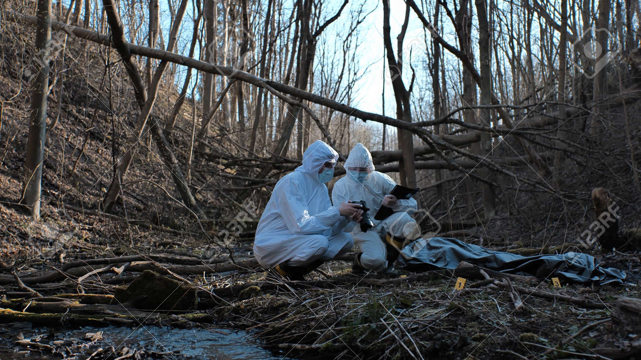 Detectives are collecting evidence in a crime scene. Forensic specialists are making expertise. Police investigation in a forest. - 159244718