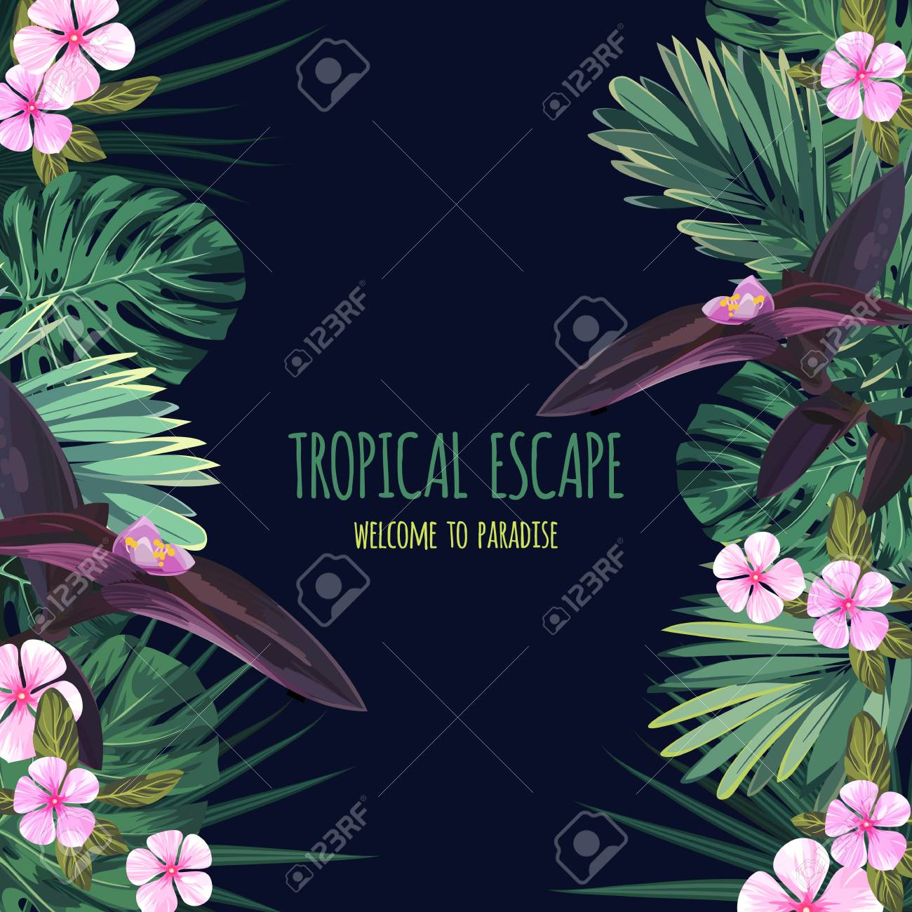 Floral square postcard design with tropical flowers monstera floral square postcard design with tropical flowers monstera and royal palm leaves exotic hawaiian izmirmasajfo