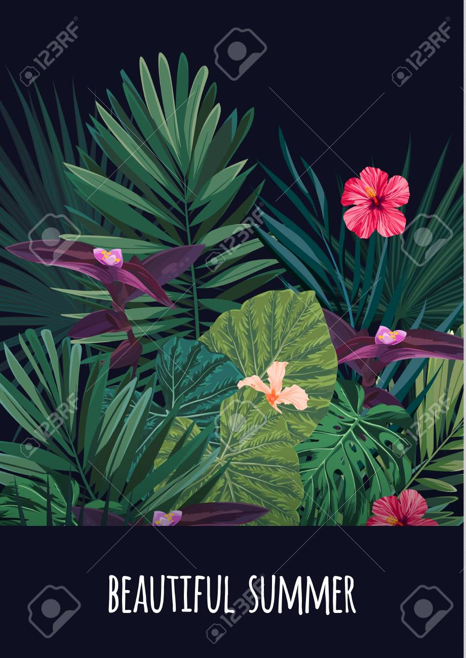 Floral vertical postcard design with hibiscus flowers monstera and floral vertical postcard design with hibiscus flowers monstera and royal palm leaves exotic hawaiian izmirmasajfo Images
