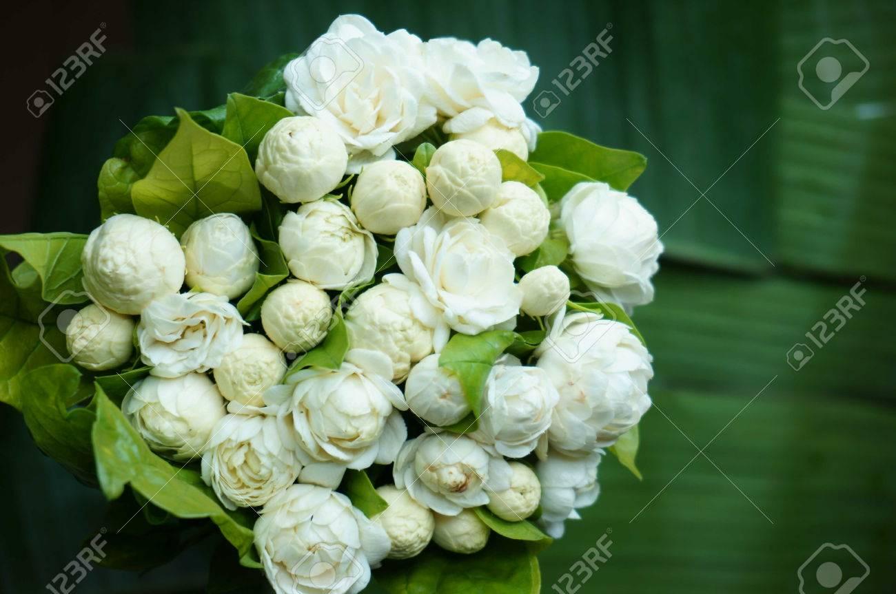 Beautiful white jasmine flowers bouquet stock photo picture and beautiful white jasmine flowers bouquet stock photo 30654008 izmirmasajfo