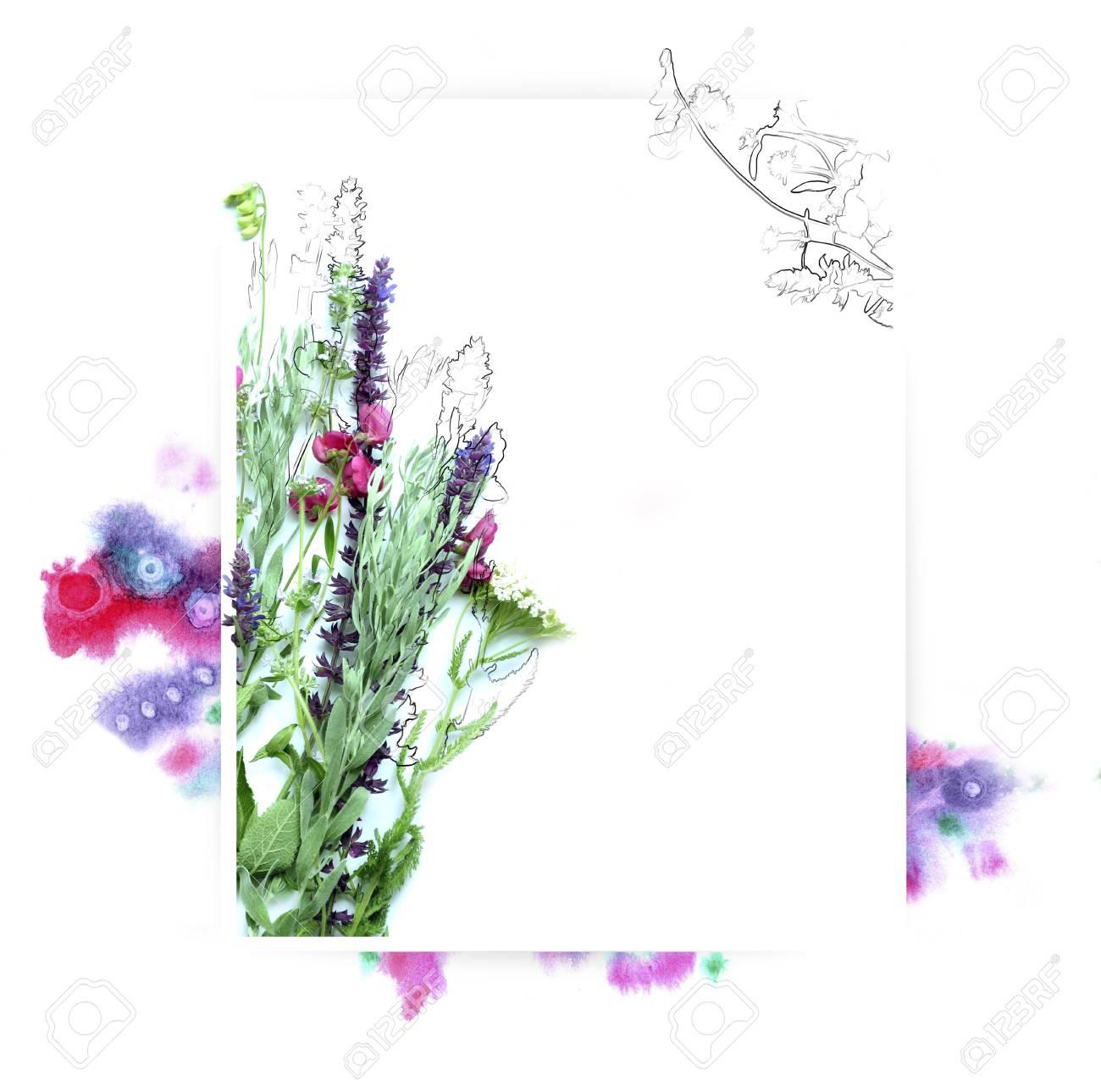Foto de archivo - Plantilla para diseño de invitación con salpicaduras de  acuarela y flor fresca y contorno de tinta ac2209a8ee4a