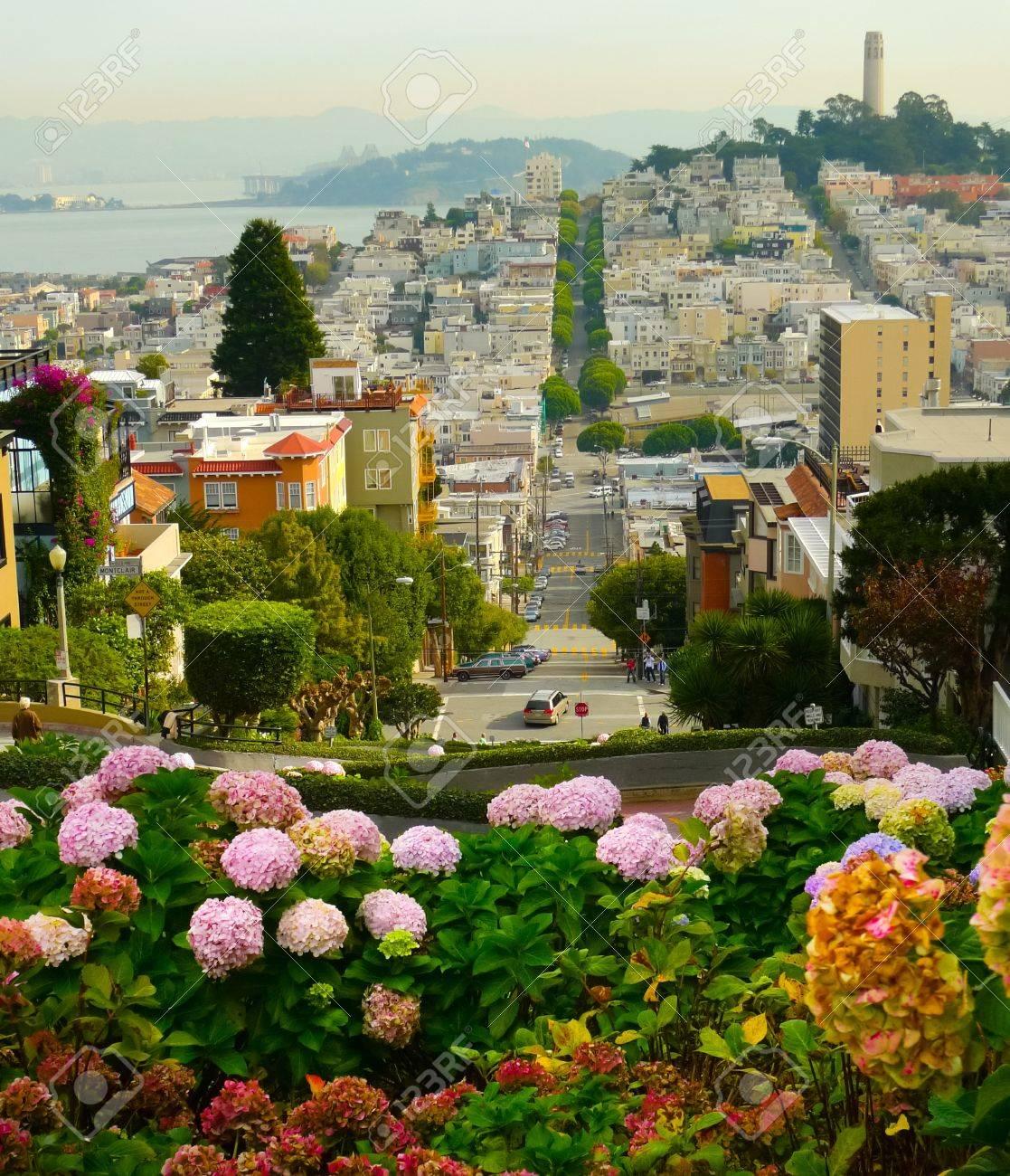Lombard Street auf dem Russian Hill, San Francisco Standard-Bild - 17007380