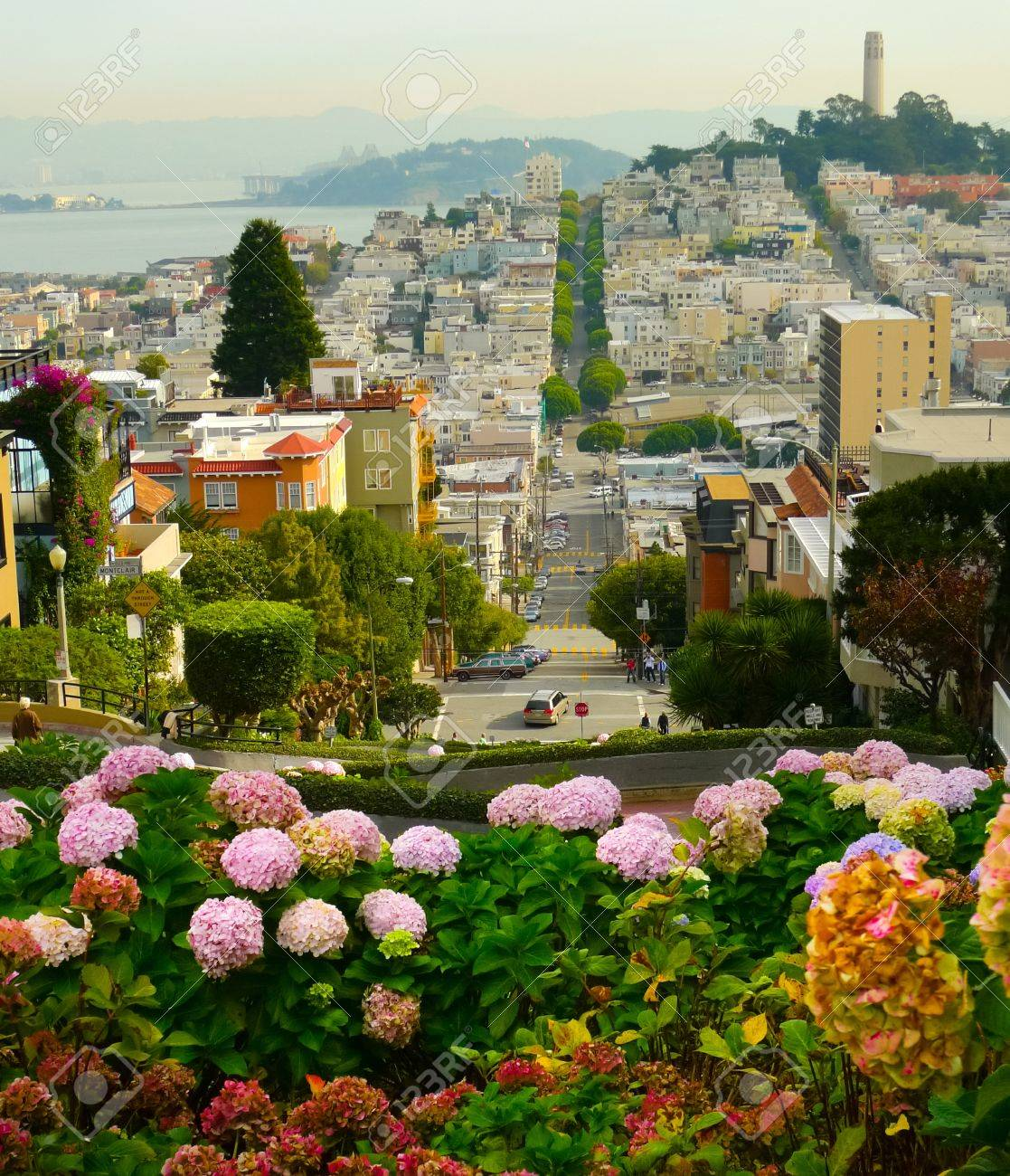 Lombard street on Russian hill, San Francisco Standard-Bild - 17007380