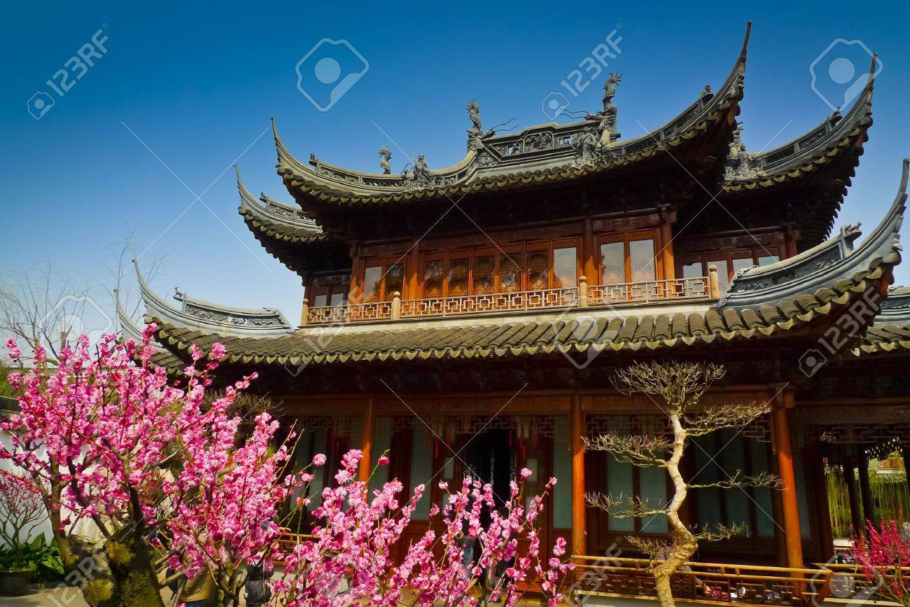 Blooming trees in front of traditional pavilions in Yuyuan Gardens, Shanghai, China Standard-Bild - 17591862