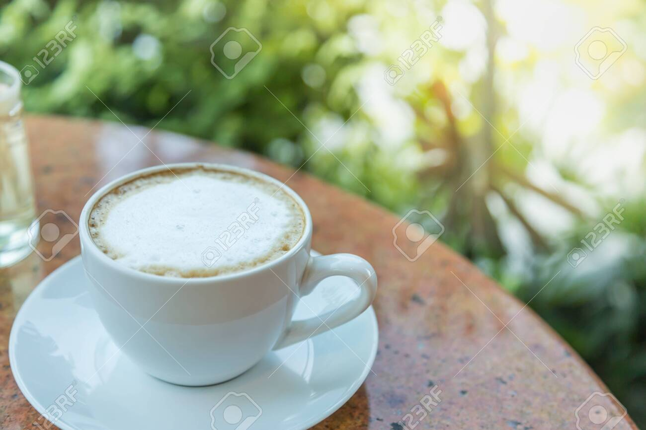 Close up of white cup and plate of hot latte coffee on round table and green leaf nature background. - 135372818
