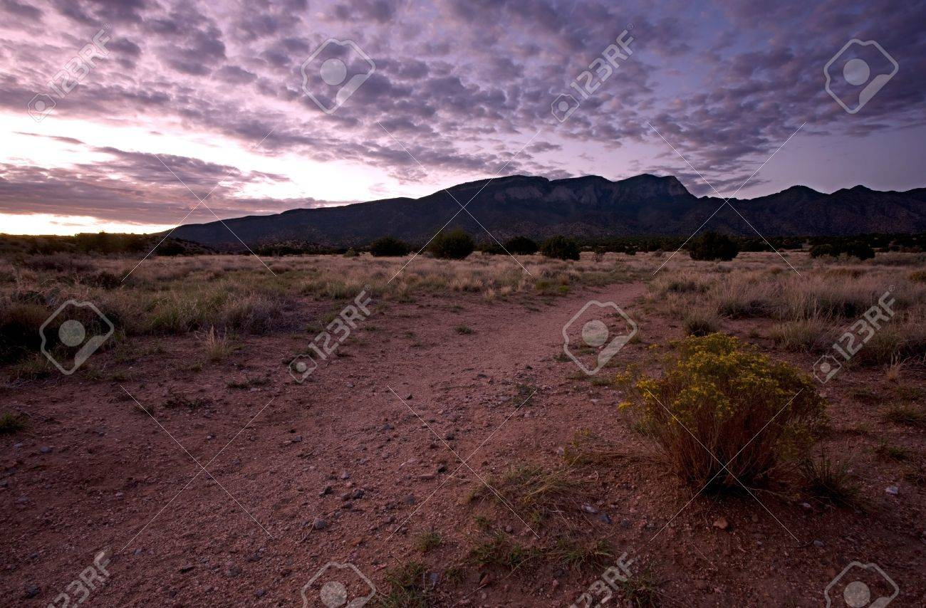 Calm desert sunrise at the sandia mountains on the chihuahuan calm desert sunrise at the sandia mountains on the chihuahuan desert in new mexico stock photo sciox Choice Image