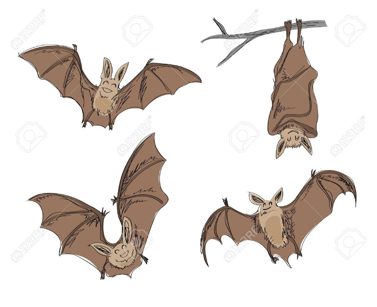 cartoon bat images u0026 stock pictures royalty free cartoon bat