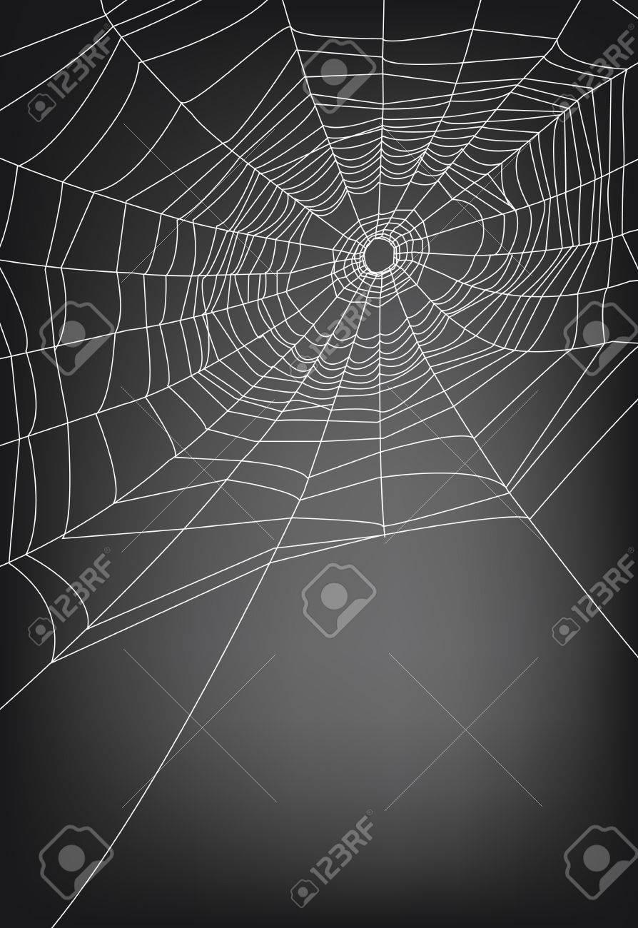 spider web illustration, for background. Stock Vector - 10599218