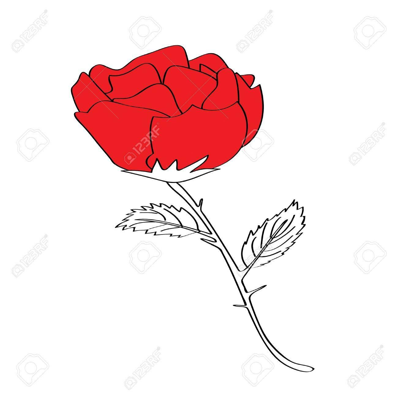 Rose Pour La Saint Valentin S Il Vous Plait Verifier Mon Profil