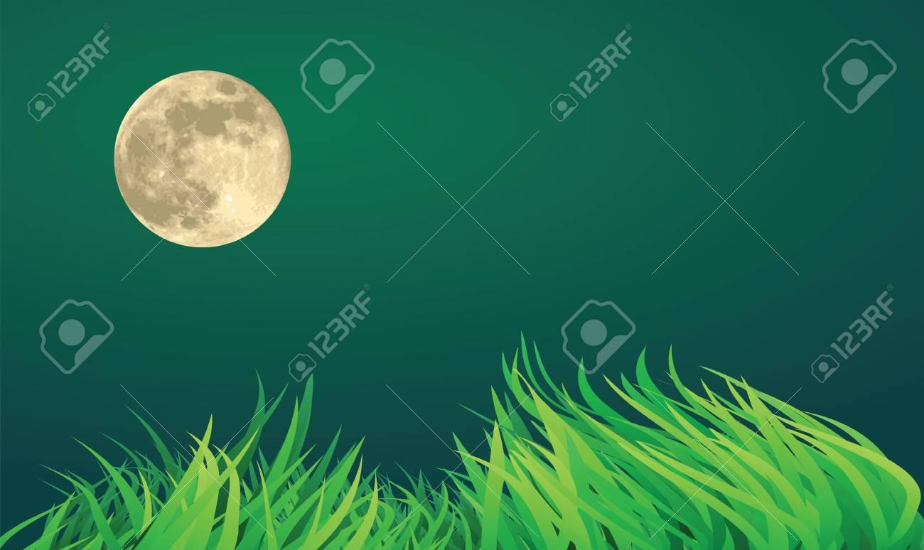 full moon night illustrations, countryside setting. Stock Vector - 11821168