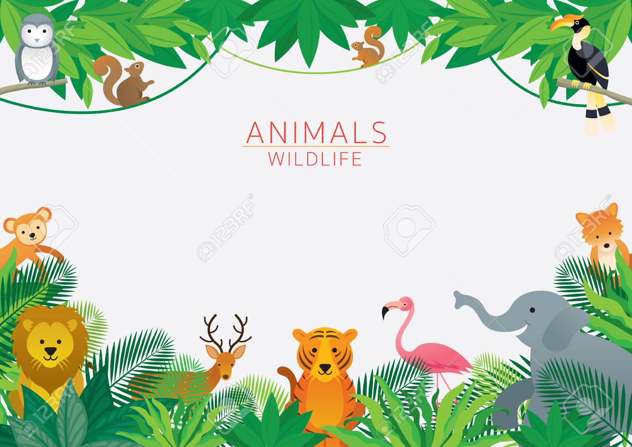 Wild Animals in Jungle, Frame, Kids and Cute Cartoon Style - 114935216