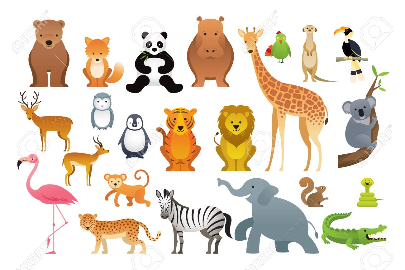 Wild Animals Vector Set, Zoo, Safari, Front View And Side View ...