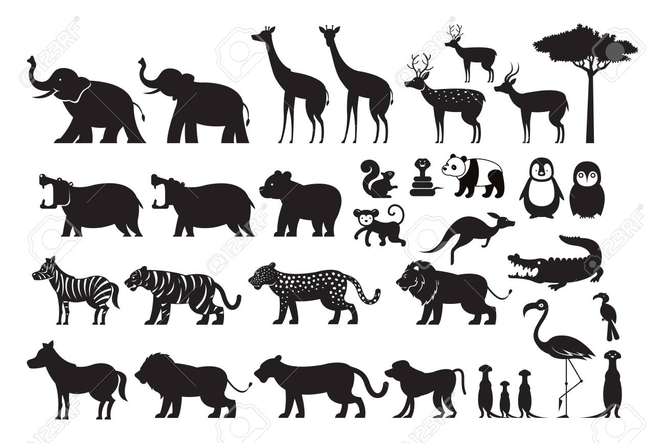 Wild Animals Silhouette Vector Set, Zoo, Safari, Front View And ...