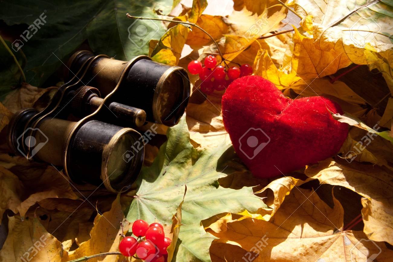 Concept Find Love. Stock Photo - 15583105