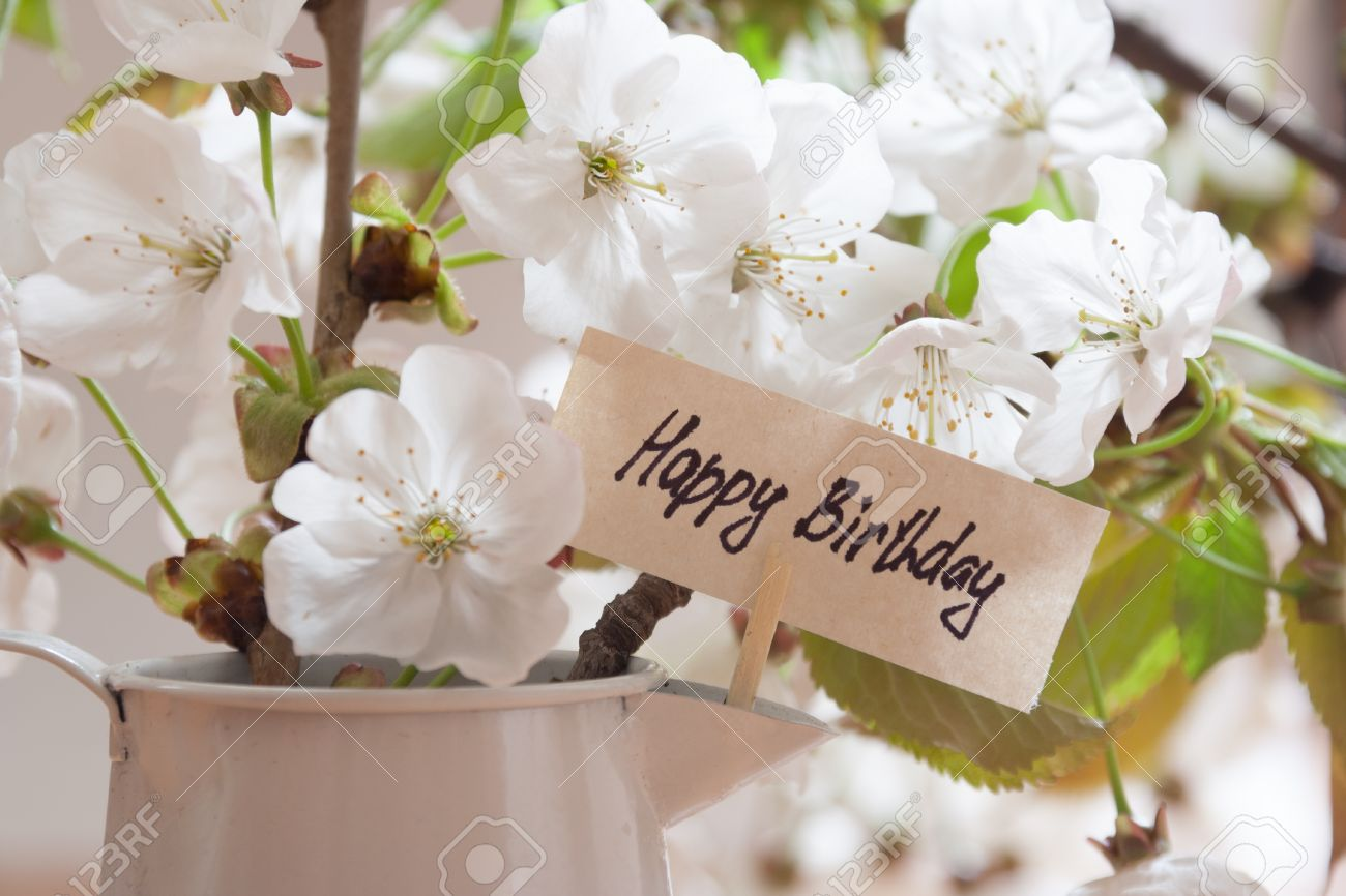 Happy Birthday Greeting Card White Flowers On A Background Stock