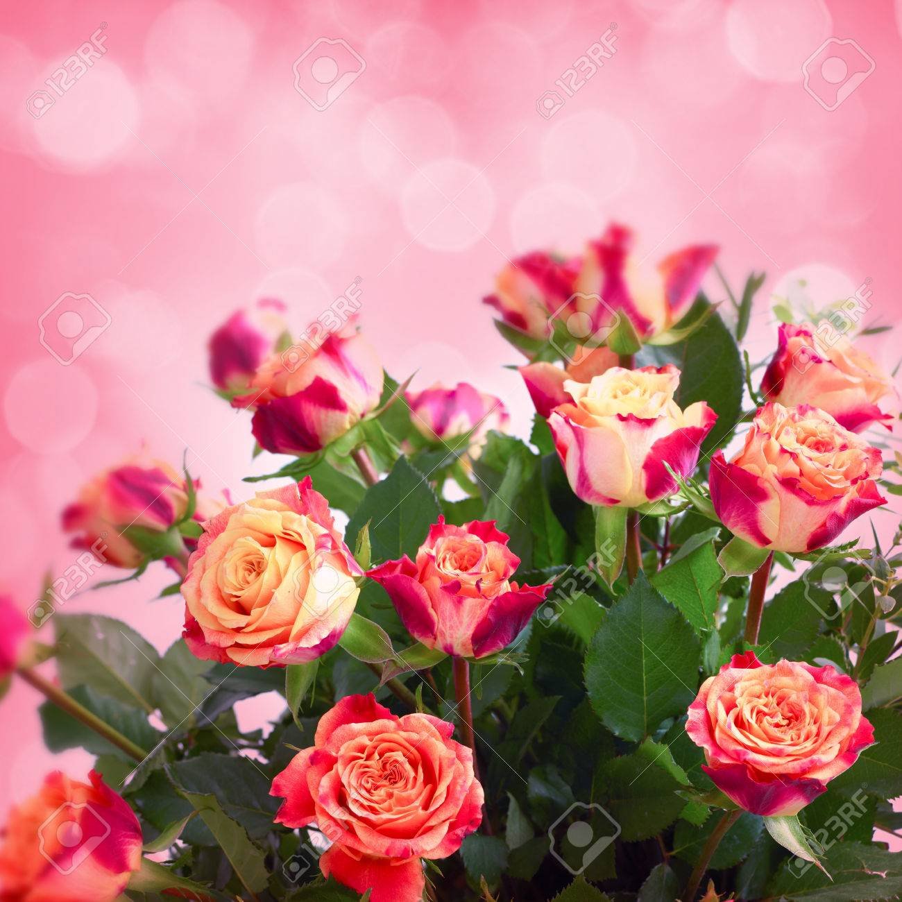 Bouquet of roses on romantic background - 43347598