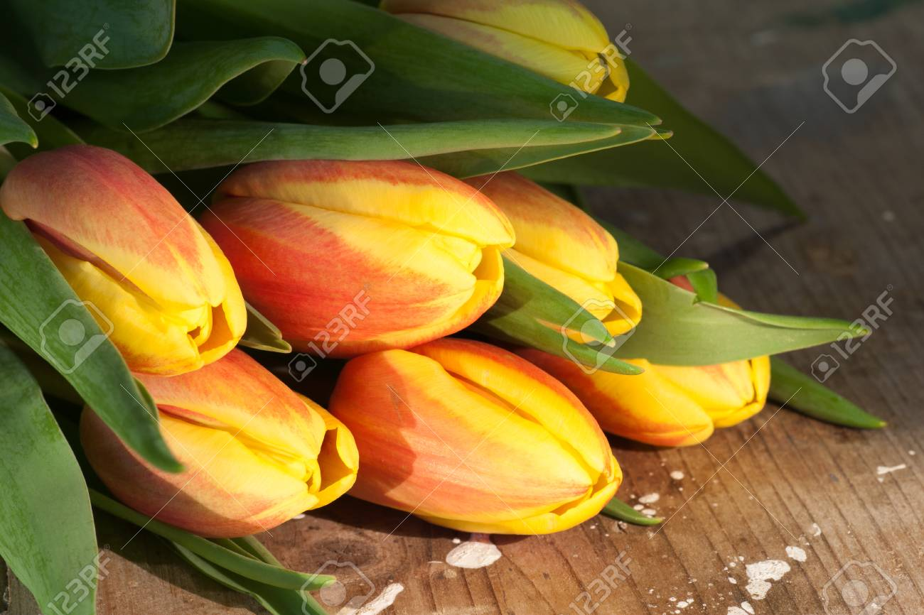 Tulips on an antique wooden background - 43358398