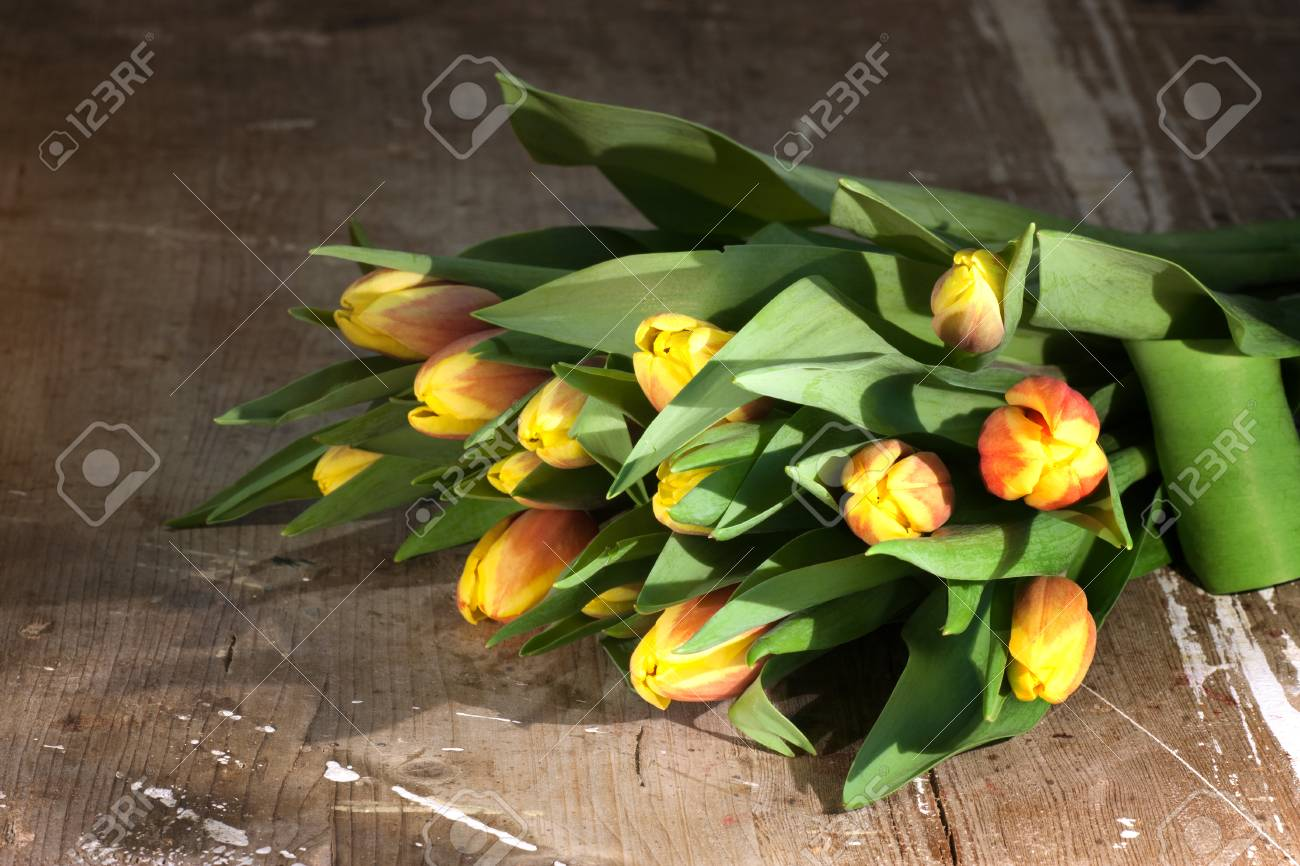 Tulips on an antique wooden background - 43359118