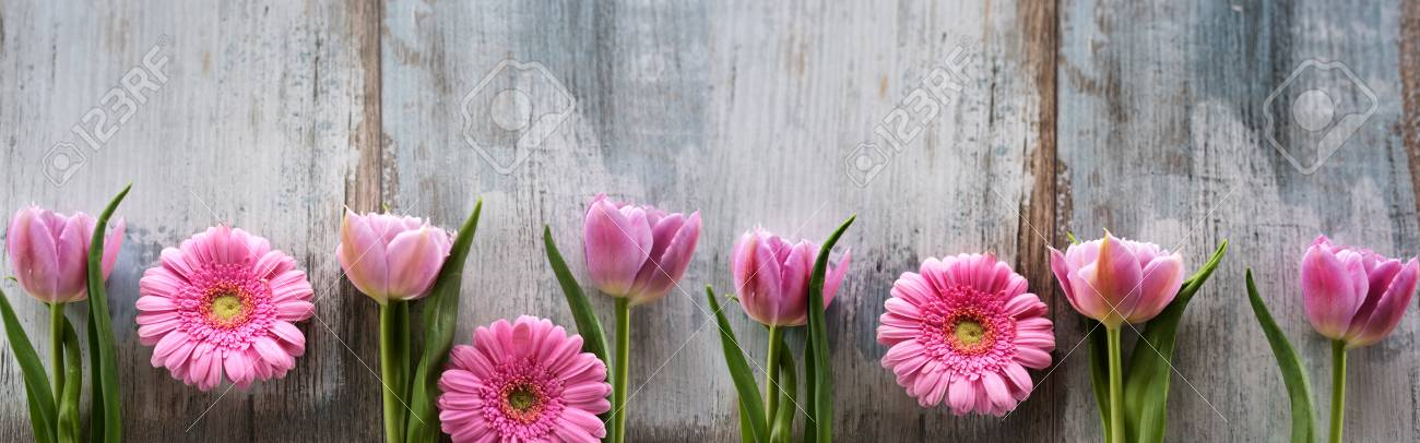 Spring flowers for mothers day on shabby wood top view stock photo spring flowers for mothers day on shabby wood top view stock photo 98716263 mightylinksfo