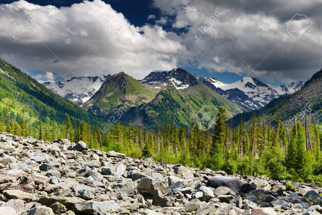 Mountain landscape with forest and cloudy sky Stock Photo - 13727641