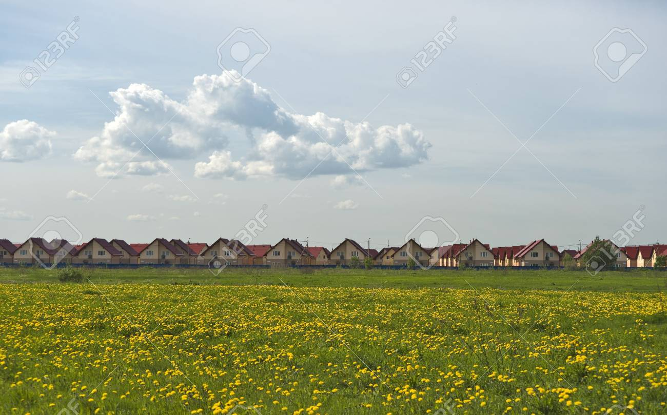 New cottages quarter and field of yellow dandelions Stock Photo - 5166001