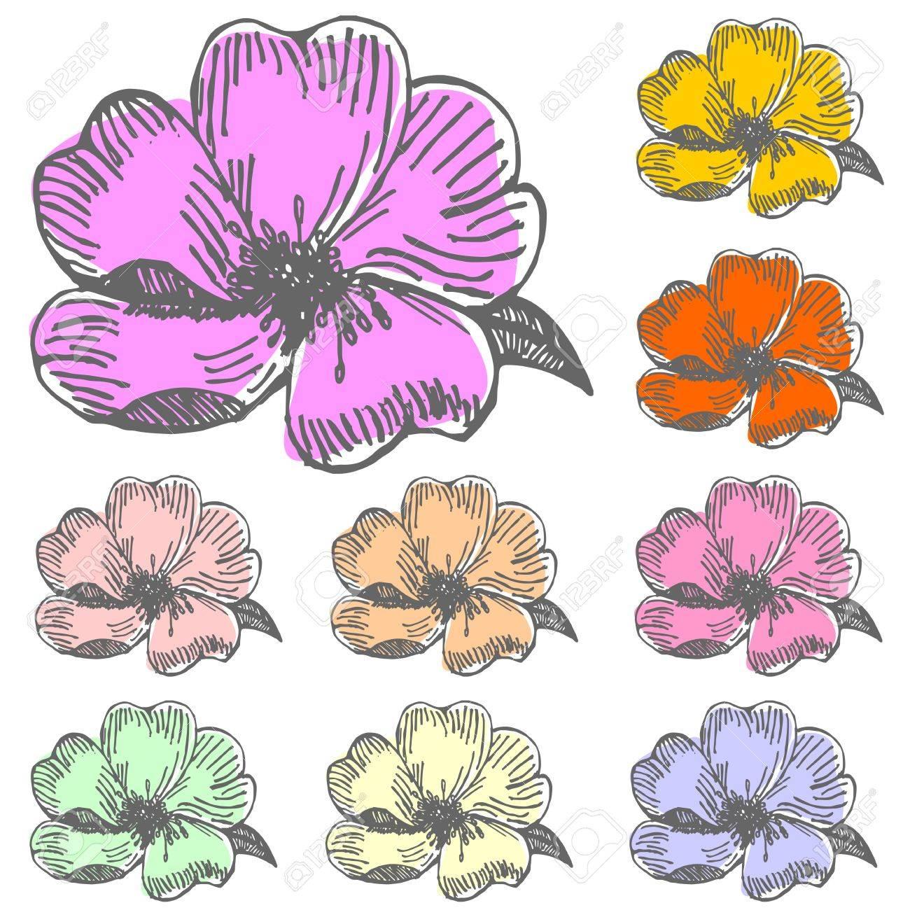 Dessin Fleur D Hibiscus Couleur