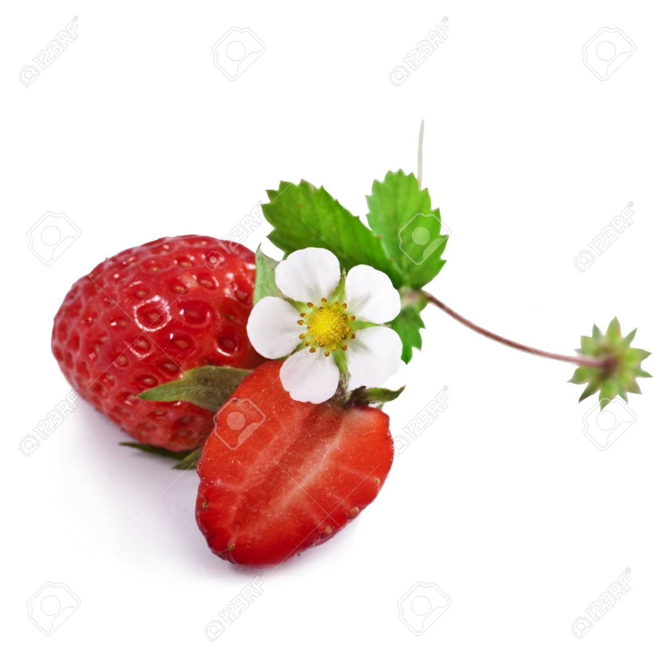 Appetizing strawberry  Isolated on a white background Stock Photo - 20853387