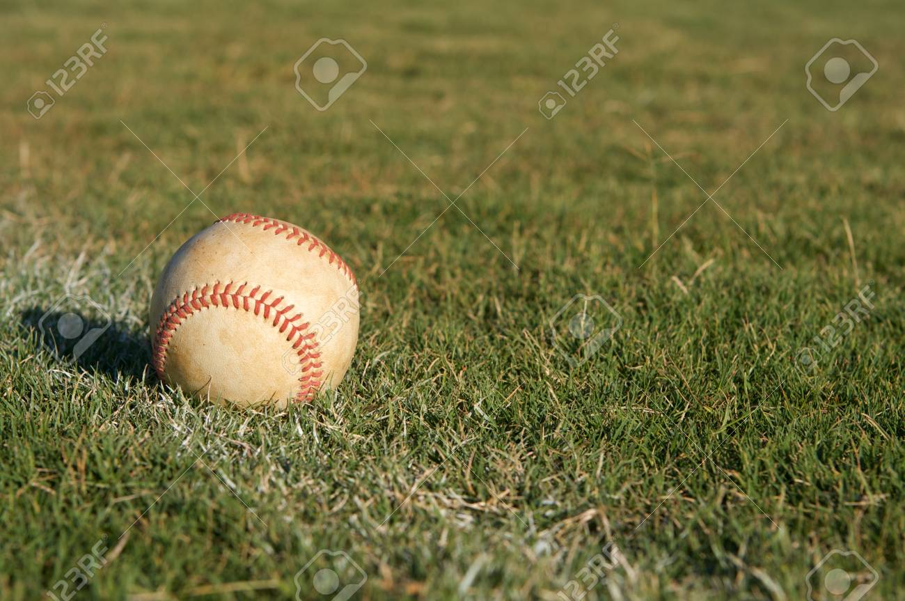 Baseball in the Outfield Stock Photo - 15221737