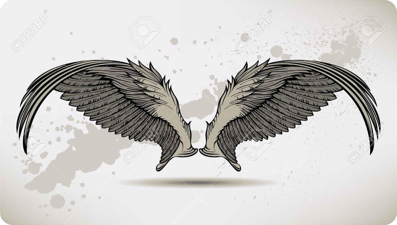 Wings Griffon  hand drawing   Eagle Wings Drawing